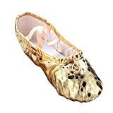 LINNUO Chaussure de Danse Ballerine Chaussure Ballet Paillettes Split Plate Ballet Doux Chaussons de Yoga Gymnastique