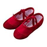 Longra Ballerines Chaussures Canvas Chaussures de Ballet Classique EU24~32 Doux Chaussons de Danse pour Gym Yoga Danse Fitness Gymnastique Chaussons ...