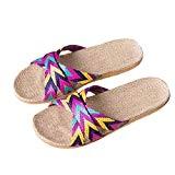 LUCKYCAT Prime Day Amazon, Sandales d'été Femme Chaussures de Été Sandales à Talons Chaussures Plates Mme Hommes Anti-Dérapant Lin Intérieur ...