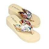 LUCKYCAT Sandales pour Femme, Prime Day Amazon Chaussures de Été Sandales à Talons Bohême Sandales de Plage à Fleurs Fond ...